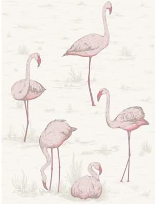 Cole & Son Flamingos Wallpaper