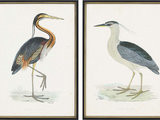 "2-Piece ""Herons"" Framed Artwork Set"