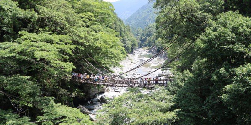 四國景點 德島祖谷秘境蔓橋抖抖與琵琶瀑布