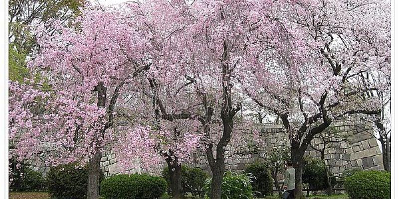 《日本》京阪。2015 五天四夜 想知道我到哪裡啪啪走嗎 201507更新