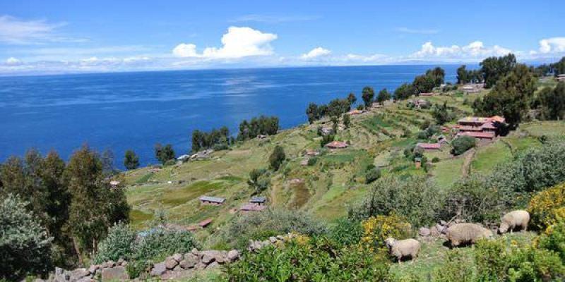 《南美》祕魯。普諾。蘆葦島。套裝一日遊。的的喀喀湖 part3 品嘗島上純樸美味
