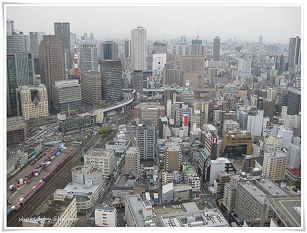 賞花遊日本 Day3- 梅田スカイビル空中庭園展望台