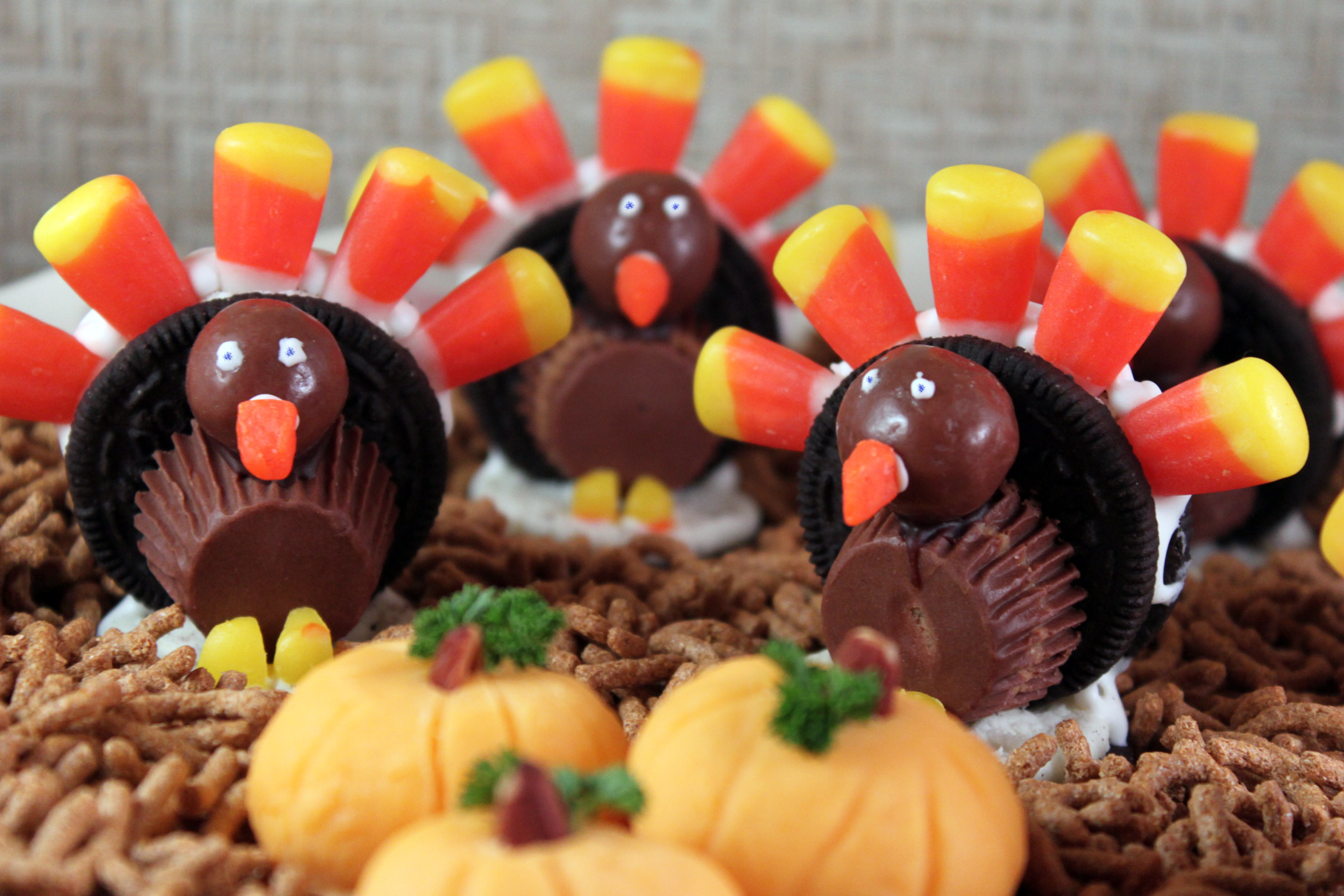 Cute Thanksgiving Desserts For Kids