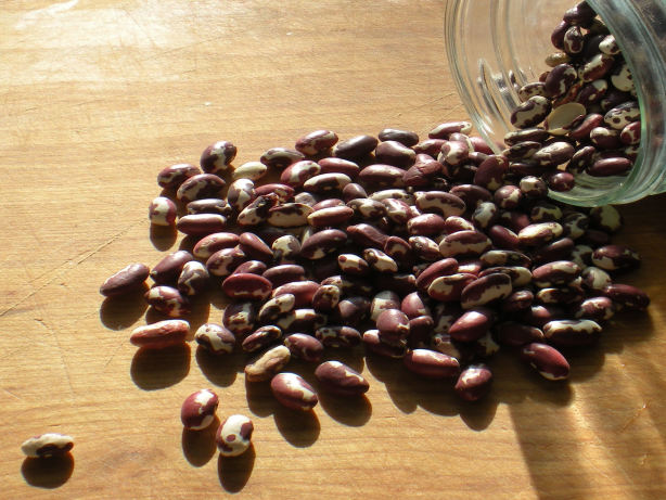 How To Make A Simple Pot Of Anasazi Beans Recipe