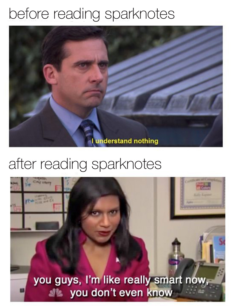 SparkLife  The 20 Funniest Most Accurate Literary Memes