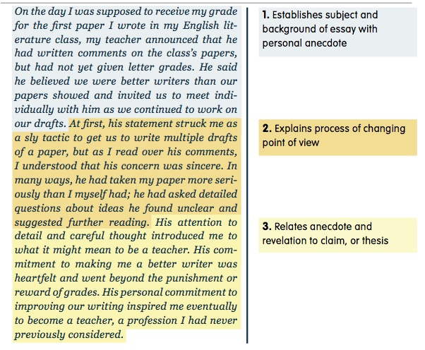 academic essay example essay career goal essay sample career goal  self essay examples academic essay academic essay example
