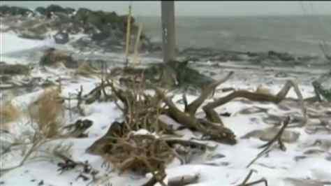 Nouveau-Brunswick : L'érosion menace un village de la péninsule acadienne