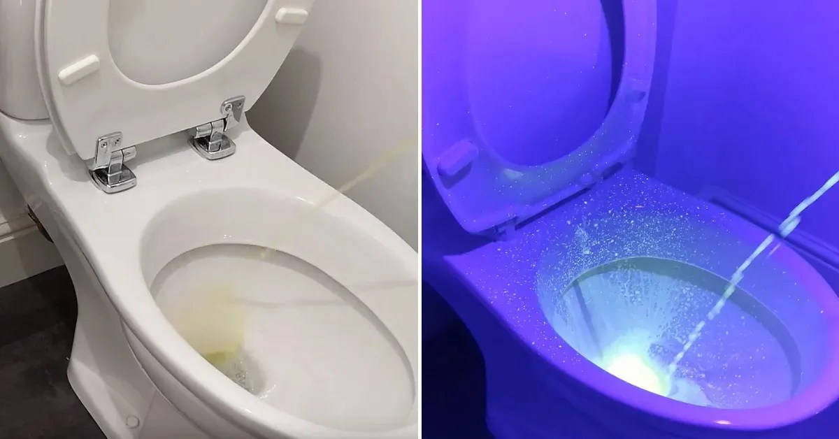 UV Light Shows Just How Messy Toilets Really Get After Men ...