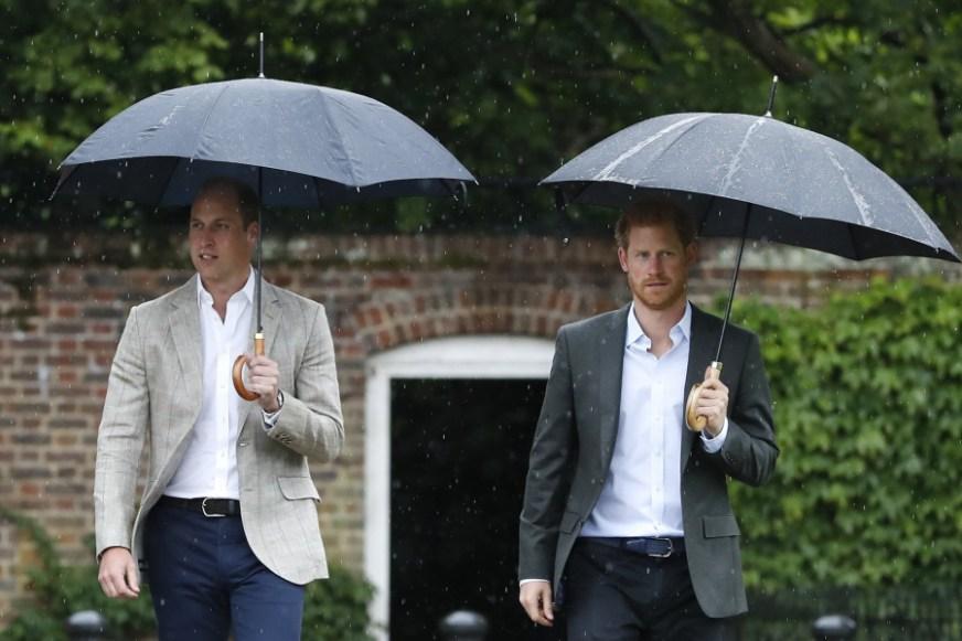 Prins Harry kiest zijn broer prins William als getuige op ...