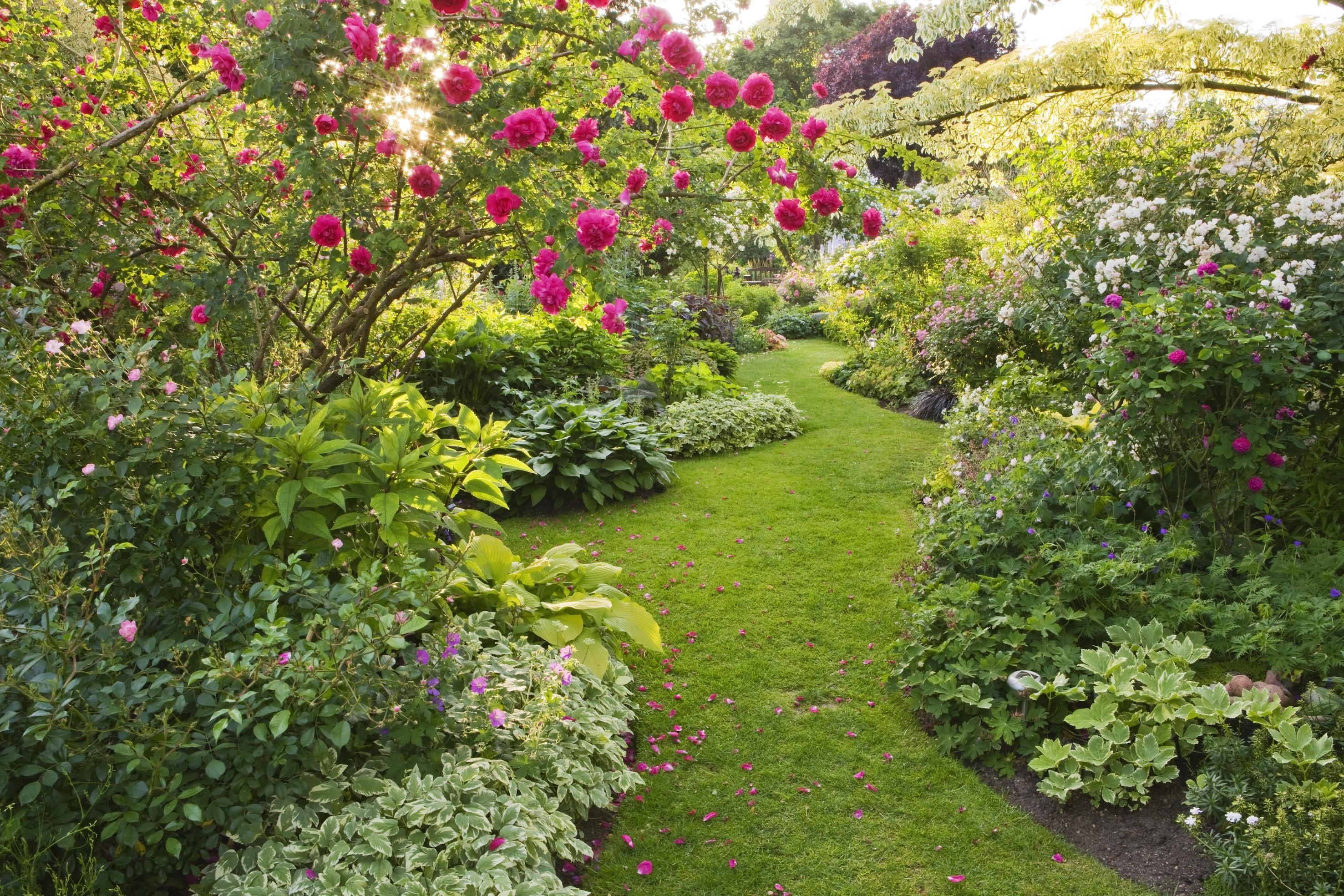 jardin d ornement 5 conseils pour