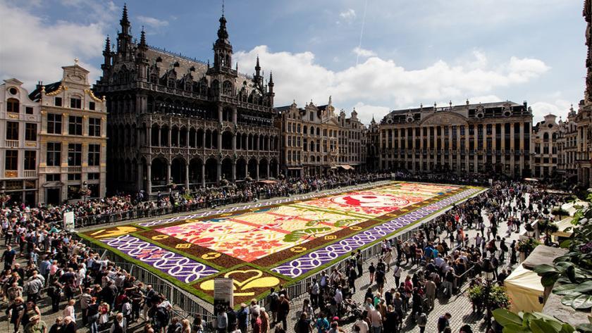 admirez le tapis de fleurs de la grand
