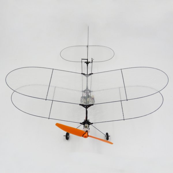 TY Model Black Flyer V2 Carbon Fiber Film RC Airplane With