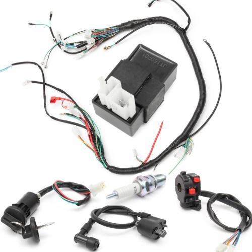 small resolution of 150cc 200cc 250cc wiring harness loom solenoid coil regulator cdi for atv quad bike