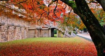 深秋跟著韓劇鬼怪到韓國10大景點浪漫賞楓趣
