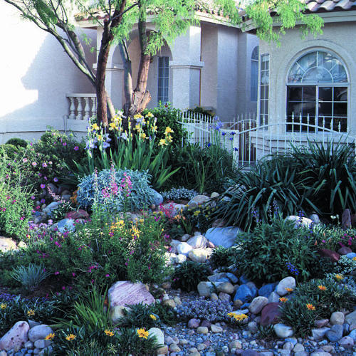 water-wise landscaping small