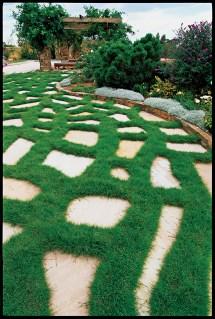 Mowing Grass Barefoot