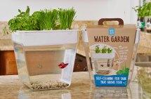 8 Adorable Ideas Windowsill Gardens - Sunset Magazine