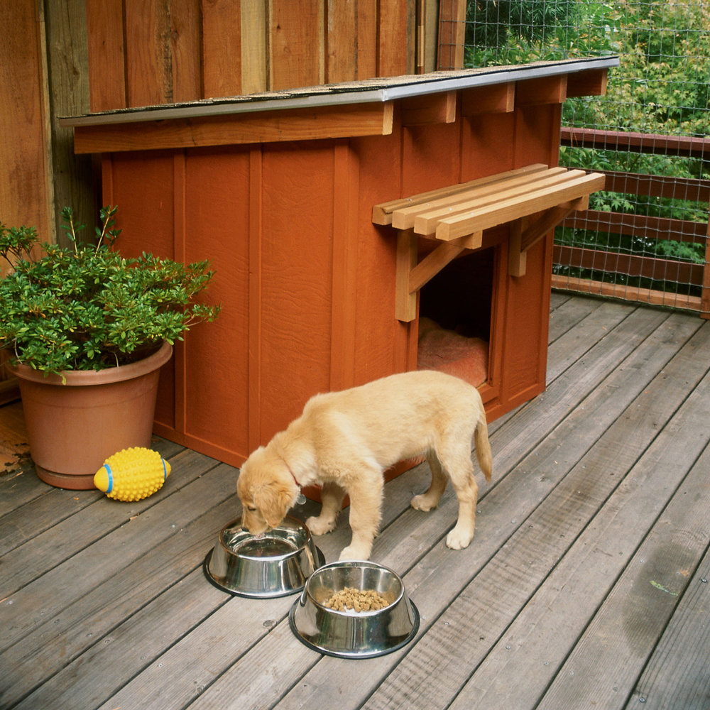 Build A Mini Ranch House For Your Pooch Sunset Magazine