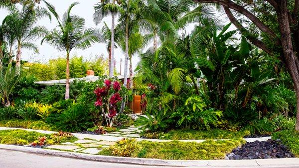 tropical plants retreat