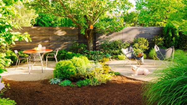 backyard ideas dogs - sunset