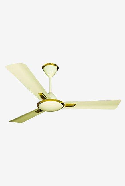 Ceiling Fan Crompton Www Gradschoolfairs Com
