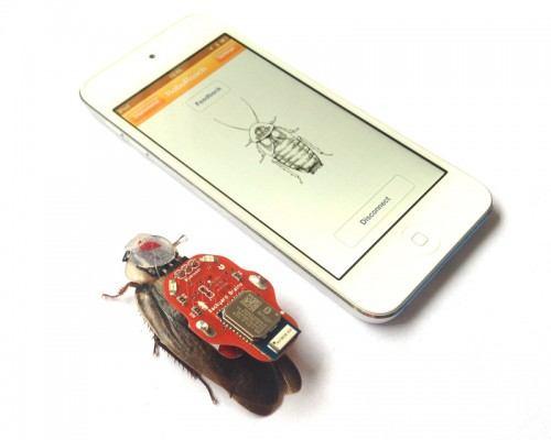 1roboroach-te-ayudara-a-controlar-cucarachas-vivas-tecnomagazine