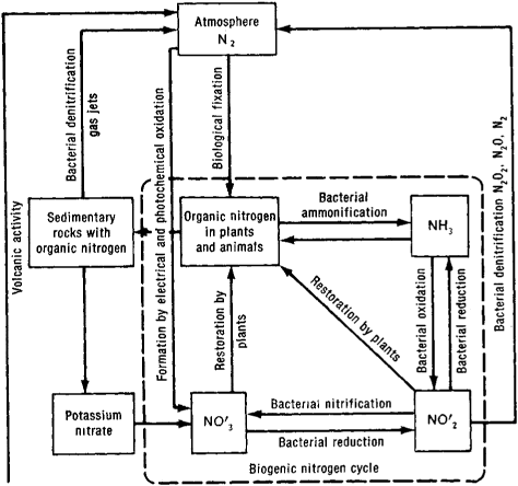 Data Flow Diagram Generator Deployment Diagram Generator