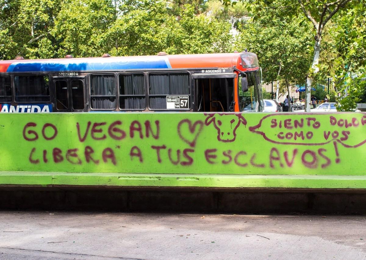 Overleven als vegetariër of veganist in Patagonië