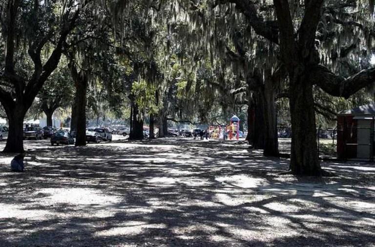 Top 10 Things To Do In Midtown Savannah