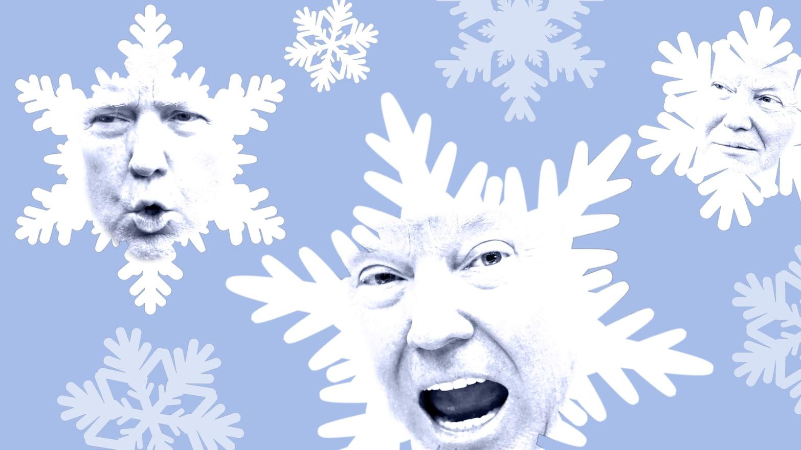 president snowflake trump needs