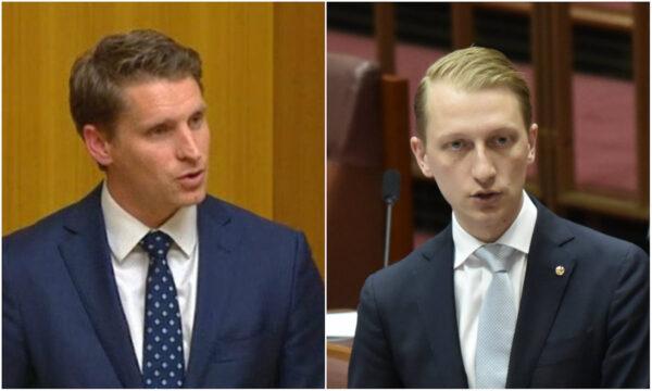 australian liberals hastie and paterson