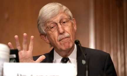 Dr. Francis Collins, director of the National Institutes of Health, testifies during the Senate Health, Education, Labor and Pensions Committee hearing in Washington on Sept. 9, 2020. (Greg Nash/POOL/AFP via Getty Images)