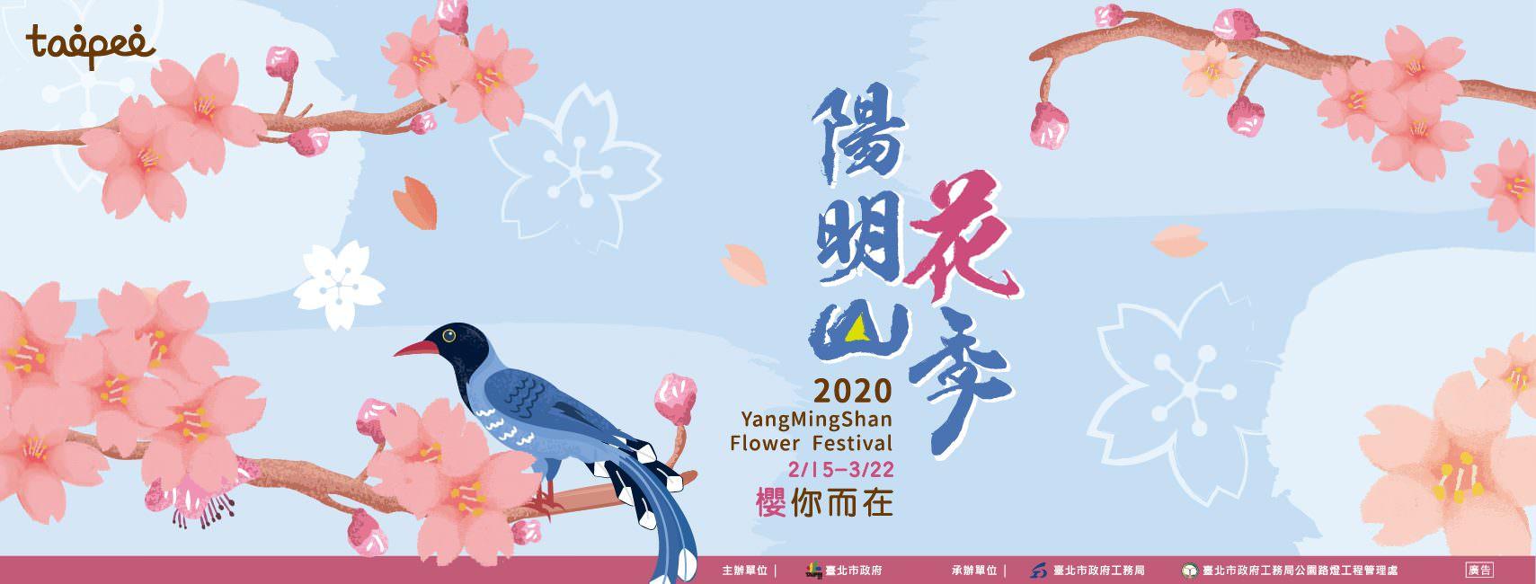 【2020陽明山花季】2/15~3/22櫻你而在!賞花路線、交管、住宿懶人包!(持續更新)