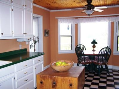 Advice On Painting Kitchen With Green Countertops Amp White Cabinets ThriftyFun