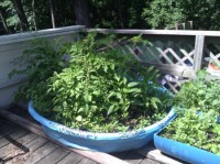 Uses for Wading Pools | ThriftyFun