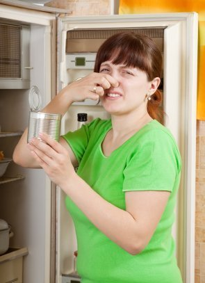 Removing Spoiled Food Odors from Refrigerator  ThriftyFun