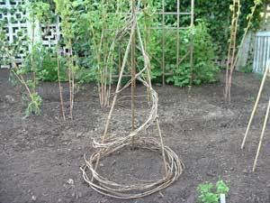 Creative Garden Trellis Ideas ThriftyFun