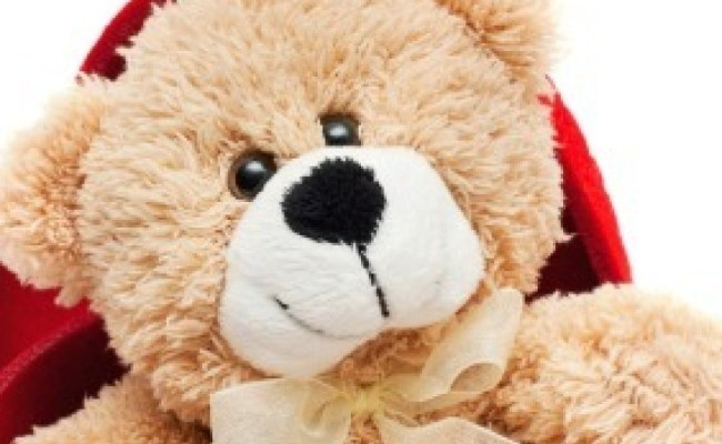 Donating Used Stuffed Animals Thriftyfun