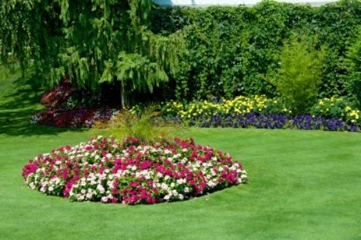 designing island garden bed