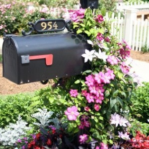 landscaping mailbox thriftyfun