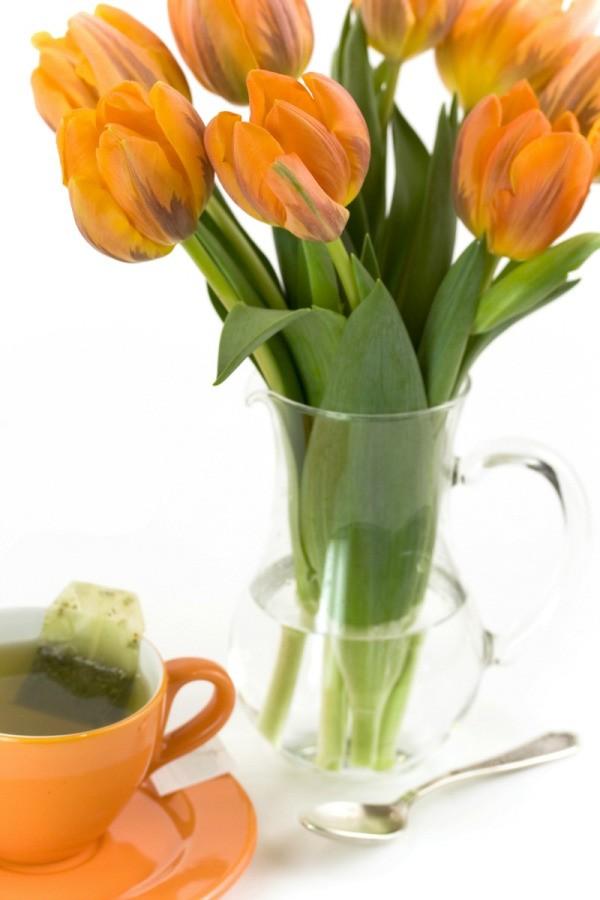 Orange Rainbow Tea Ideas  ThriftyFun