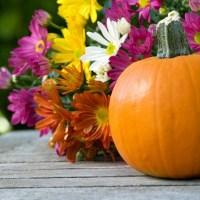 Outdoor Fall Decorations | ThriftyFun