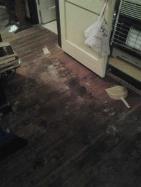 Removing Pet Urine Stains from Hardwood Floors | ThriftyFun