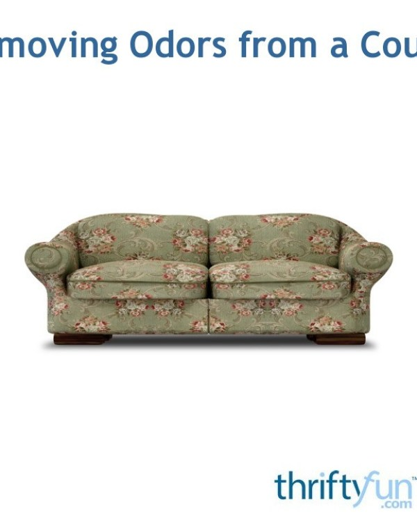 How To Get Rid Of Mold Smell In Sofa
