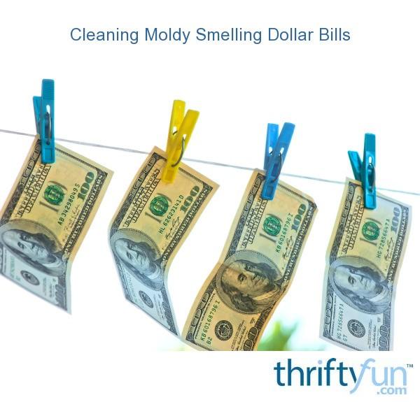 Cleaning Moldy Smelling Dollar Bills  ThriftyFun