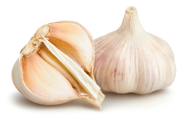 garlic and dogs l1 jpg