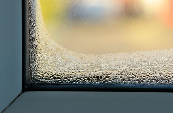 Getting Rid Of Condensation Between Glass Windows  Thriftyfun
