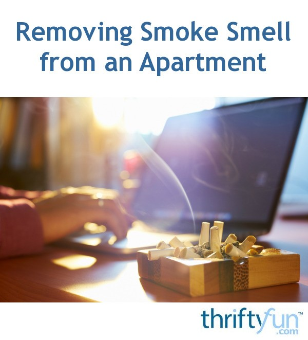 Removing Cigarette Smoke Smell from an Apartment  ThriftyFun