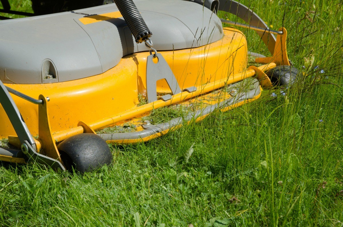 hight resolution of a riding lawnmower in the grass