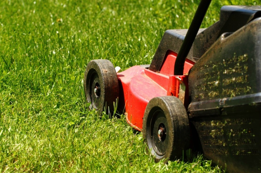 medium resolution of if your lawn mower carburetor is not getting gas the fuel line may be clogged this is a guide about lawn mower carburetor not getting gas